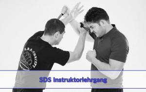 seminar-sdsinstruktor2